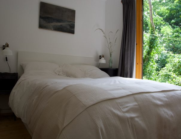 Downstairs_rear_bed